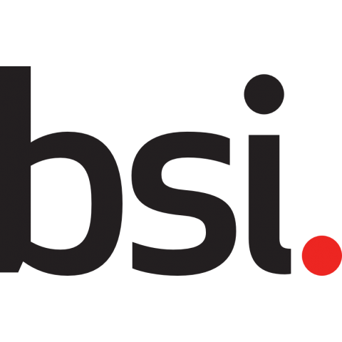BSI Group: Standards, Training, Testing, Assessment and Certification